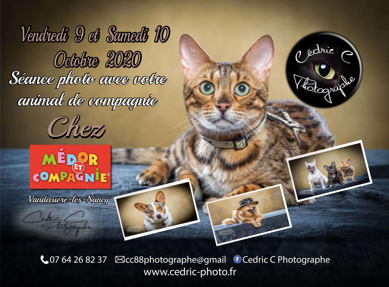 Séance photos chez Médor et Compagnie Vandœuvre-lès-Nancy