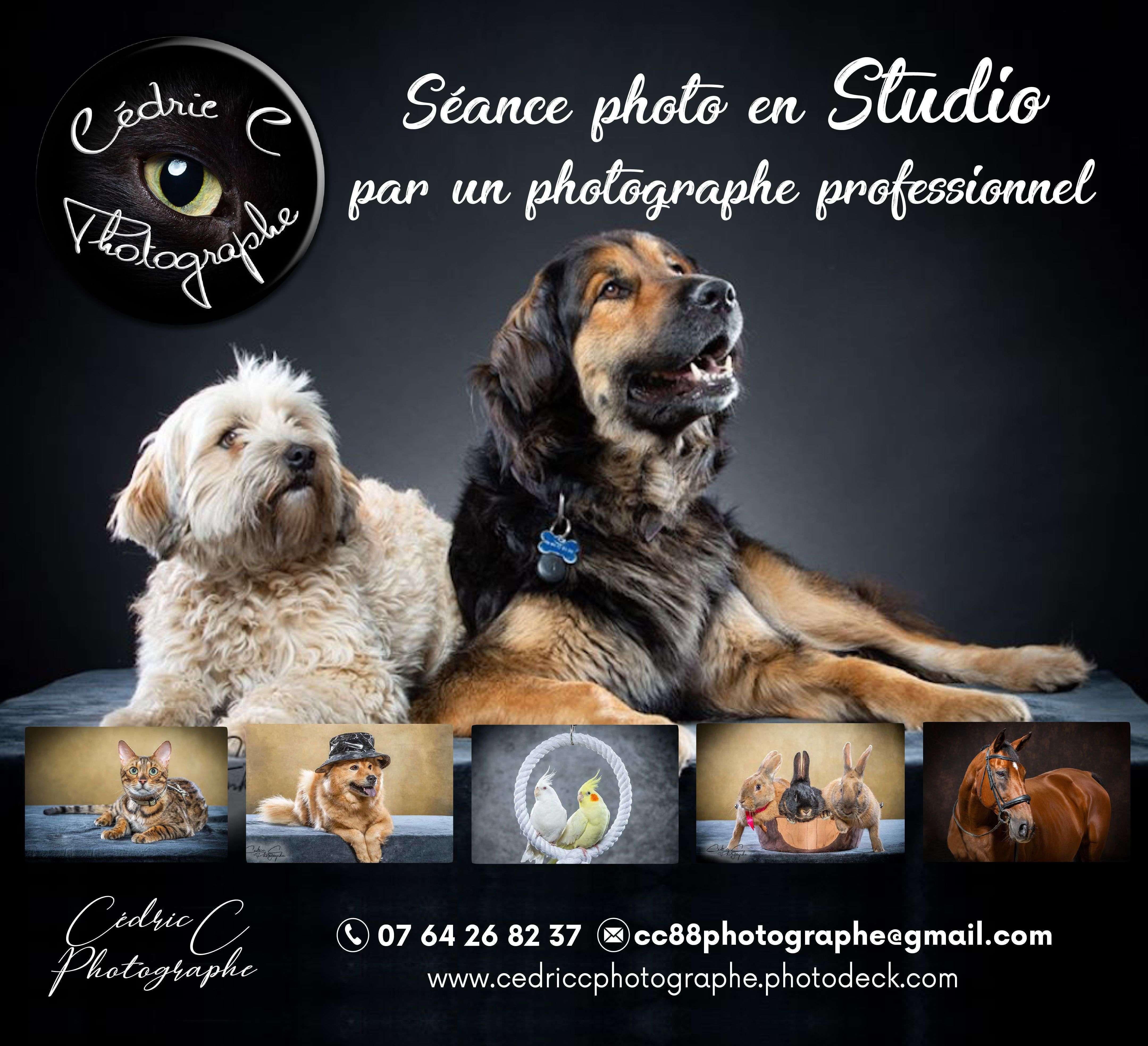 Séance photo en studio !