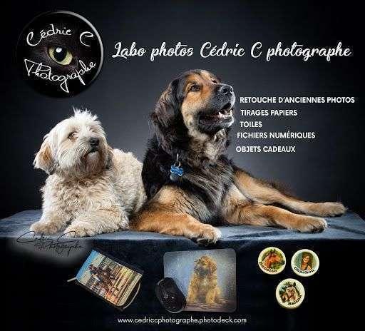 Services labo photos