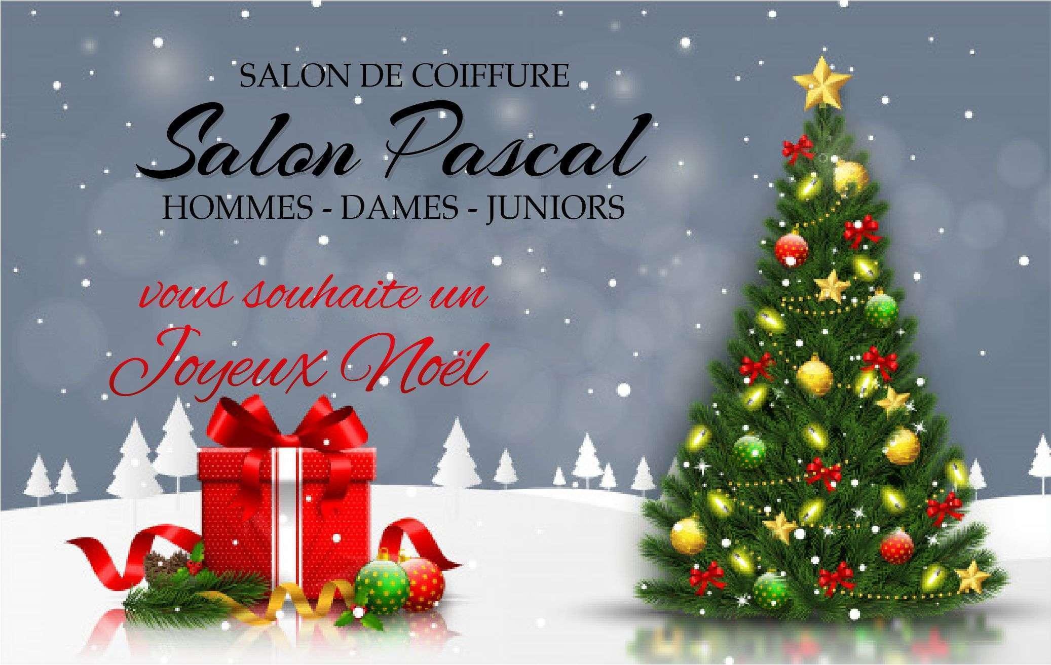 Salon Pascal vous souhaite un Joyeux Noël