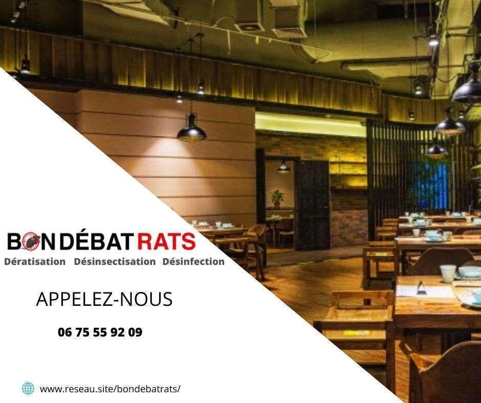 Dératisation Restaurant